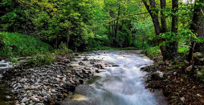 Селченската река покрай Канарата