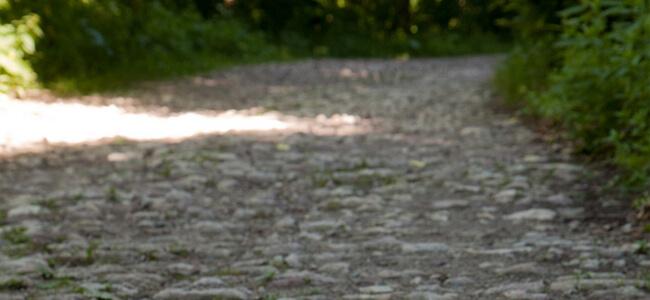 Римския път към връх Българка